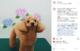☆Instagram2021.6月 Part①☆の画像