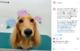 ☆Instagram2021.6月 Part②☆の画像