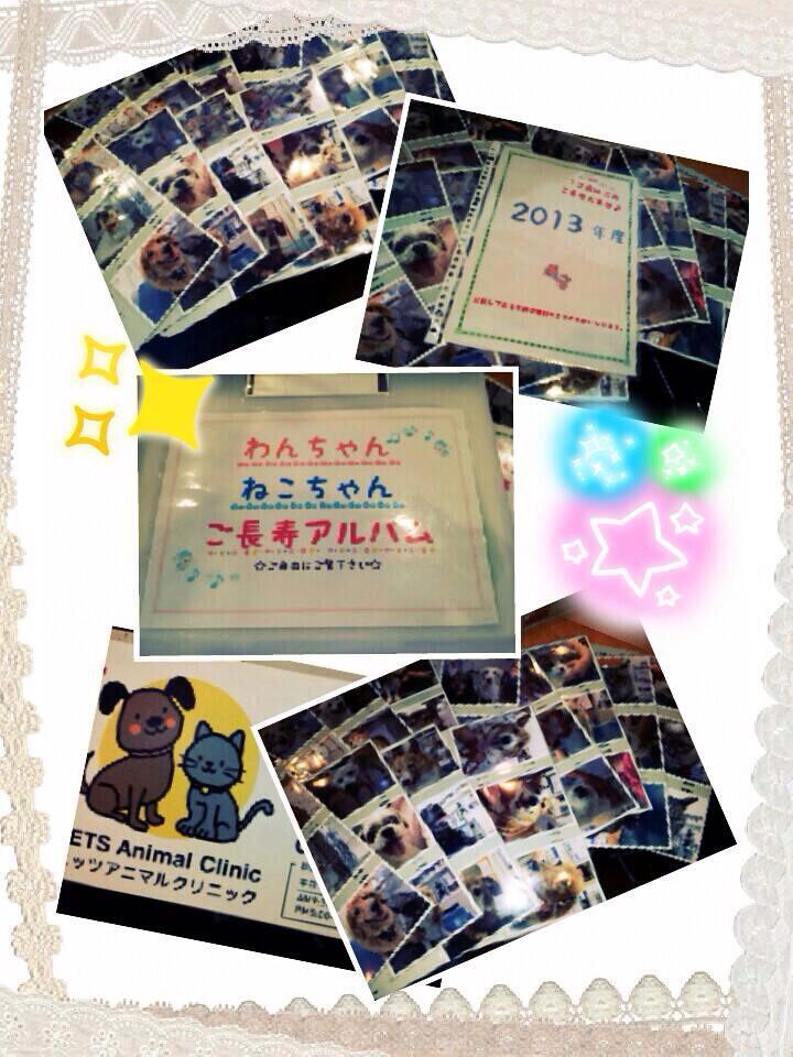 2013敬老アルバム.jpg