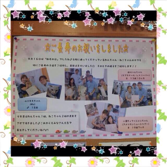 2013敬老ポスター.jpg
