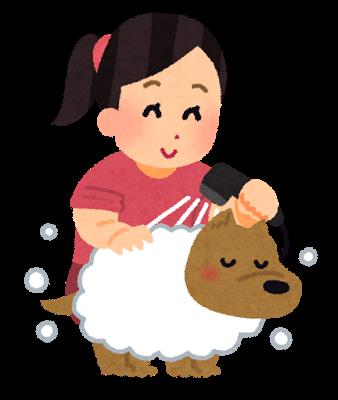 シャンプー犬